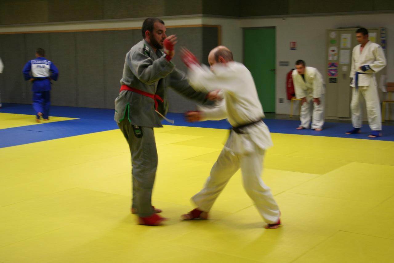 Jujitsu fighting system